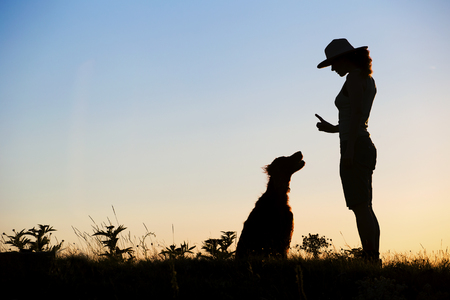 Dog Training in Indiana