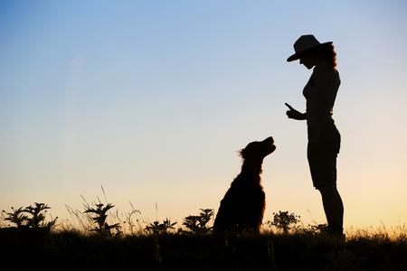 Dog Training in Indiana